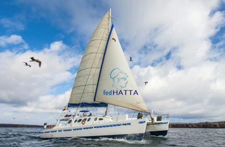 Λύθηκε ο ναυτικός κόμπος – Αποκαθίσταται η ναύλωση πλοίων αναψυχής από τα τουριστικά γραφεία