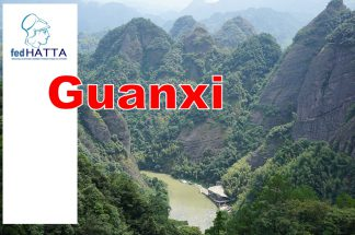 Τα τουριστικά γραφεία γεφυρώνουν Ελλάδα και Κίνα – Η περίπτωση της περιοχής Guangxi
